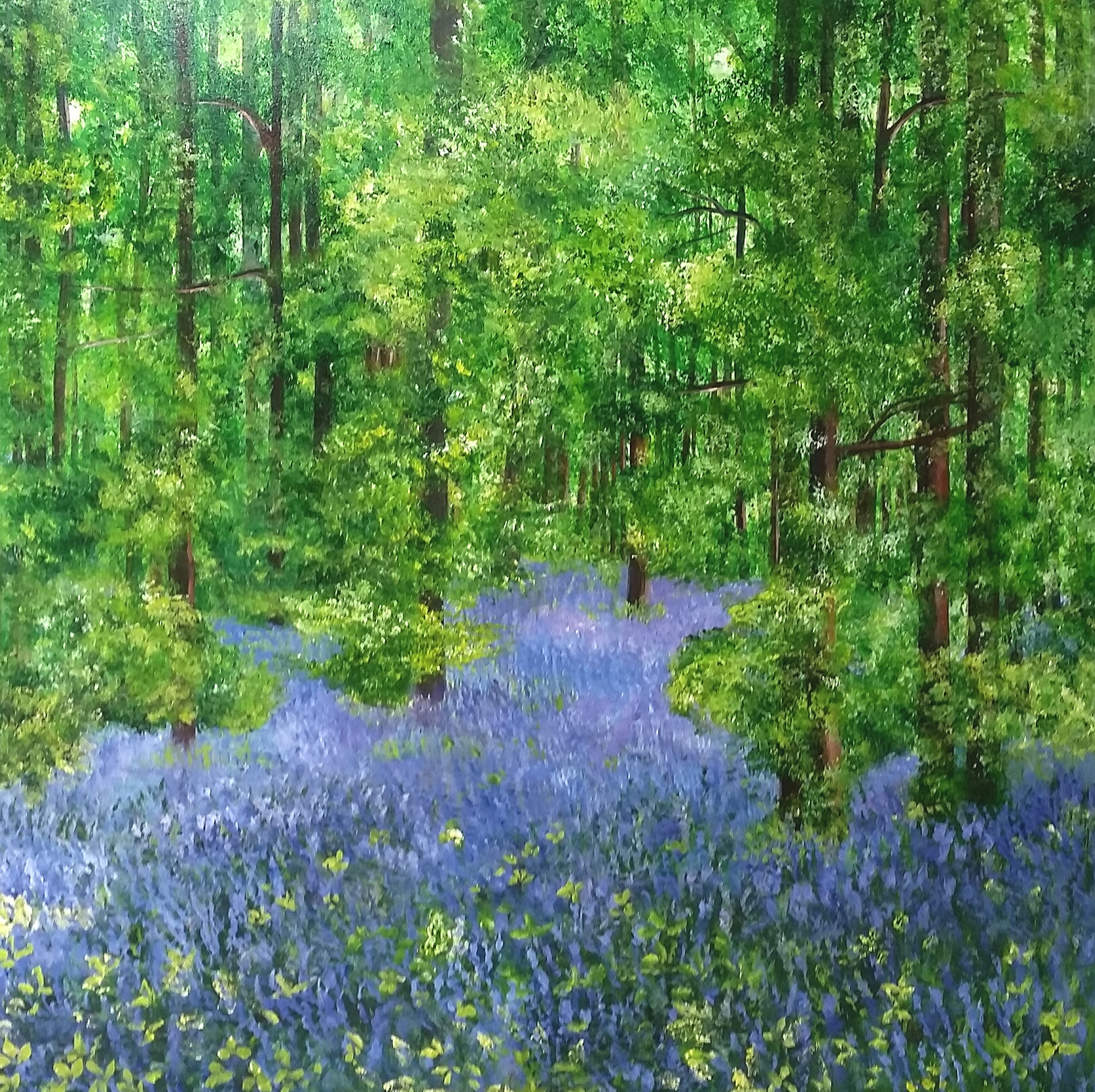 Bluebell Discovery, Sorry SOLD