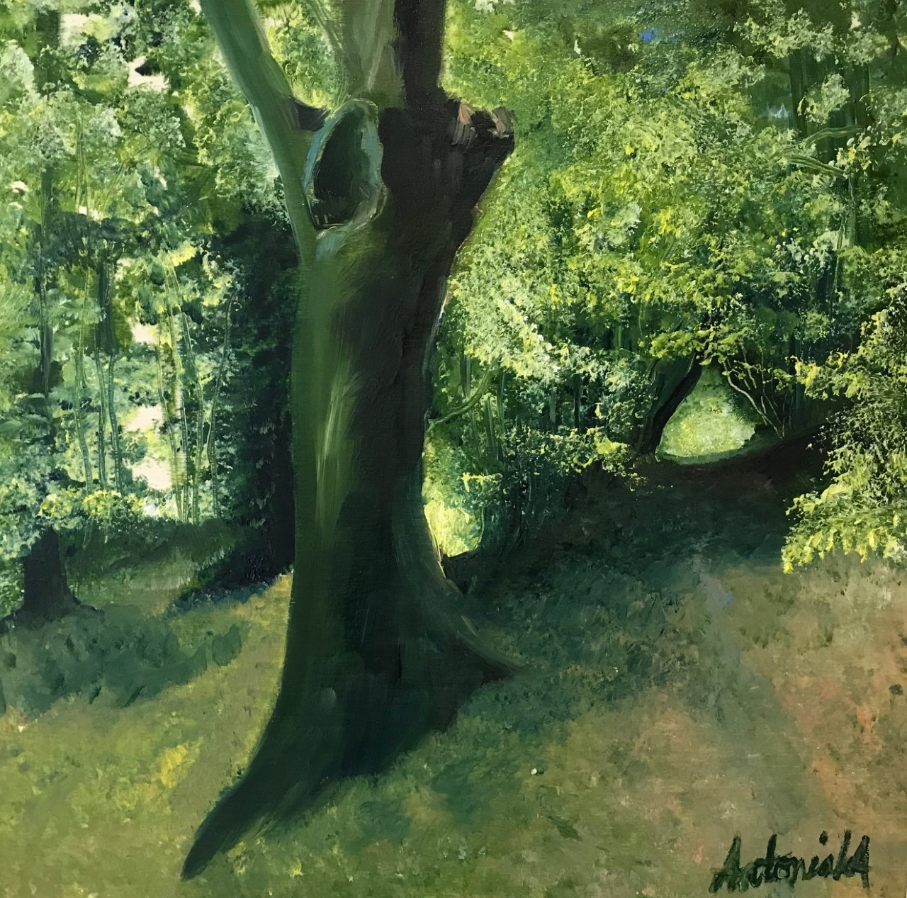 The Woods at Priory Park, Oil Painting, £90
