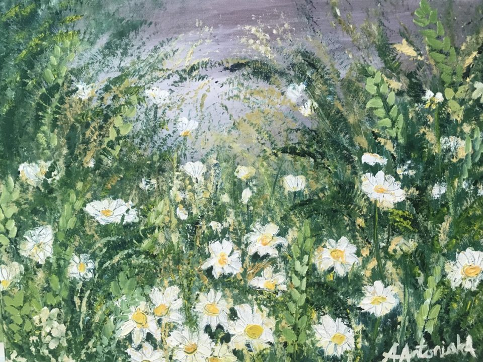 Wild Daisies (sorry, now SOLD)