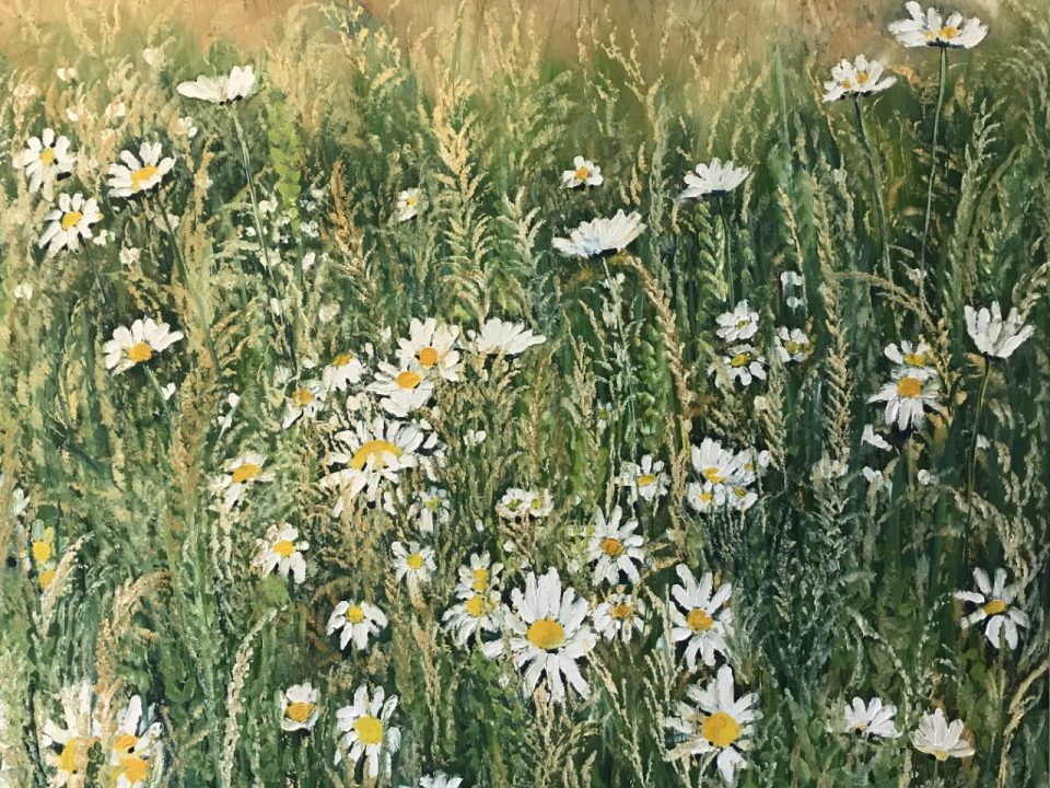 Wild Daisy Meadow, SOLD