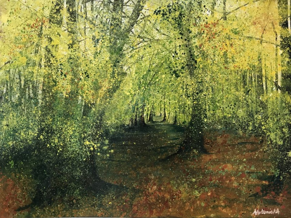 Autumn in the Forest Light, SOLD