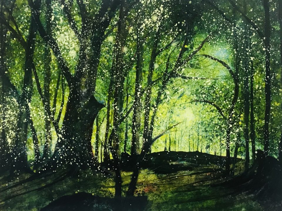 Dappled Light in Priory Park Woods, (SOLD)