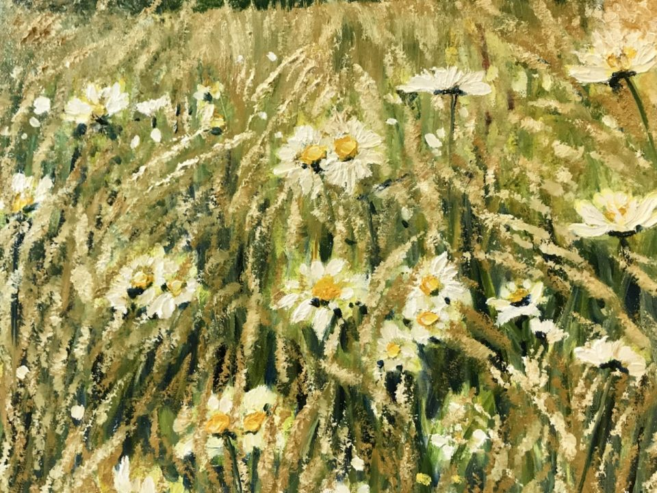 End of Summer Daisies, (SOLD)
